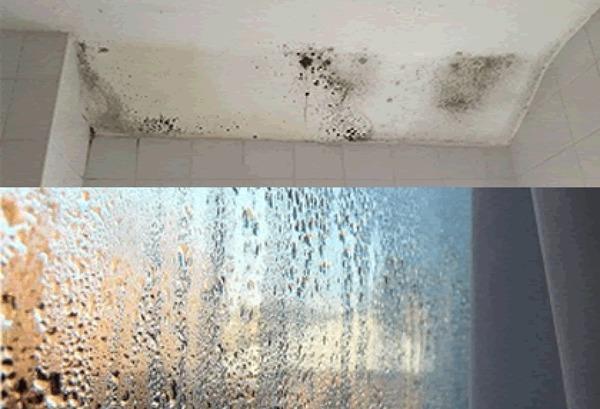 Humedades por condensación