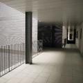 100 Viviendas sociales_patio 2