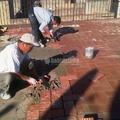 Restauración De Cubierta Plana Sin Incremento De Peso