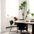 Aprovecha los elementos estructurales o arquitectónicos que pueda haber en el salón.