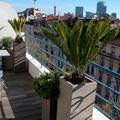 Balcón renovado con suelos de madera y maceteros grandes