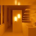 baño abierto al espacio principal