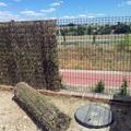 Cobertura de brezo en valla