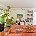 ficus lyrata sofa naranja