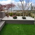 Jardin moderno y de bajo mantenimiento