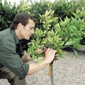 Jardineros profesionales