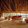La expresividad del bambú