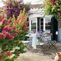 mesa terraza con flores y desayuno