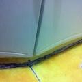 Moho bajo lavabo 2
