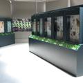 Museo de la Vida