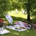 picnic bajo los árboles