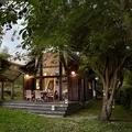 Casa de madera con árboles