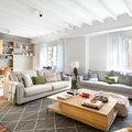 Salon sofas grises
