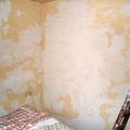 Saneado de paredes