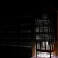 Vista nocturna 3D