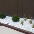 Zona jardinera lateral (foto 4)