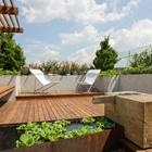 terraza con vegetación