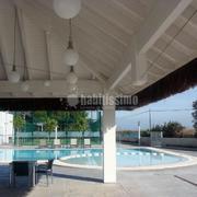 Palapa tropical Hotel Gato Montes