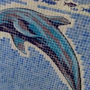 Ilustraciones para tu piscina