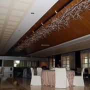 Creación y diseño para lámpara en sala de banquetes