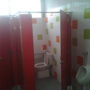 baños fenolico