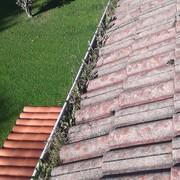 Cantabria verde