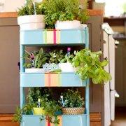 Carrito de cocina para plantas