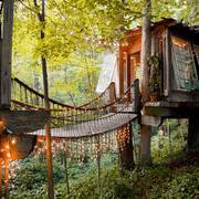 casa de árbol con luces