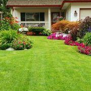 diseño y mantenimiento de jardines  riego automatico etc jardinou gerona y alrededores