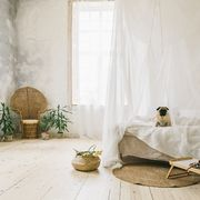 dormitorio mosquitera