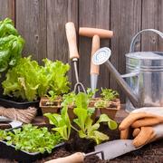 utensilios necesarios para huerto urbano