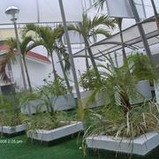 Diseño y Construccion de Jardin con cesped artificial