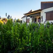 Acondicionamiento de un jardín privado