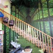 Decoración mural 1: Biiblioteca Trinity College