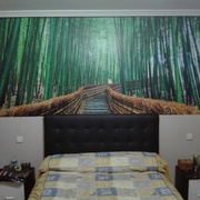 Mural con vinilo impreso especial para pared.