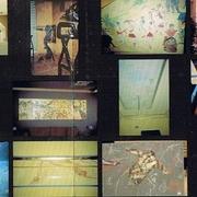 Murales y decoración de paredes.