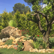 Naranjo y piedra
