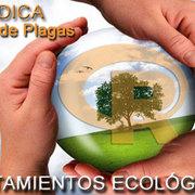 RADICA | TRATAMIENTOS ECOLÓGICOS
