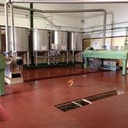 Reparación de solera de resina epoxi en industria alimentaria