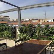Terraza ático en Madrid: de triste y aburrida a llena de vida y frescor