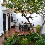 terraza II