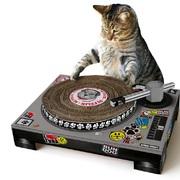 tocadiscos-gato