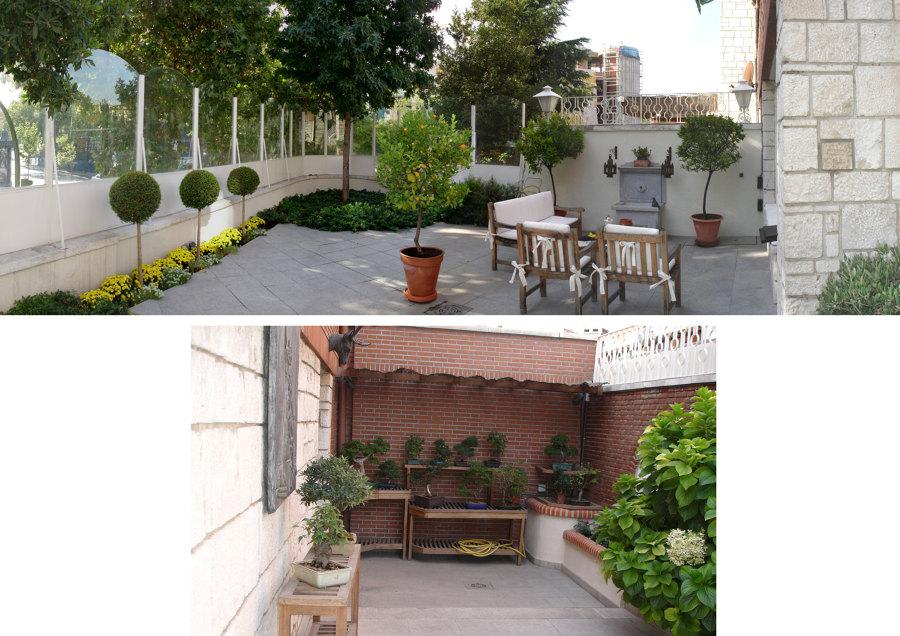 00 Estado antes de la reforma de la terraza-jardín