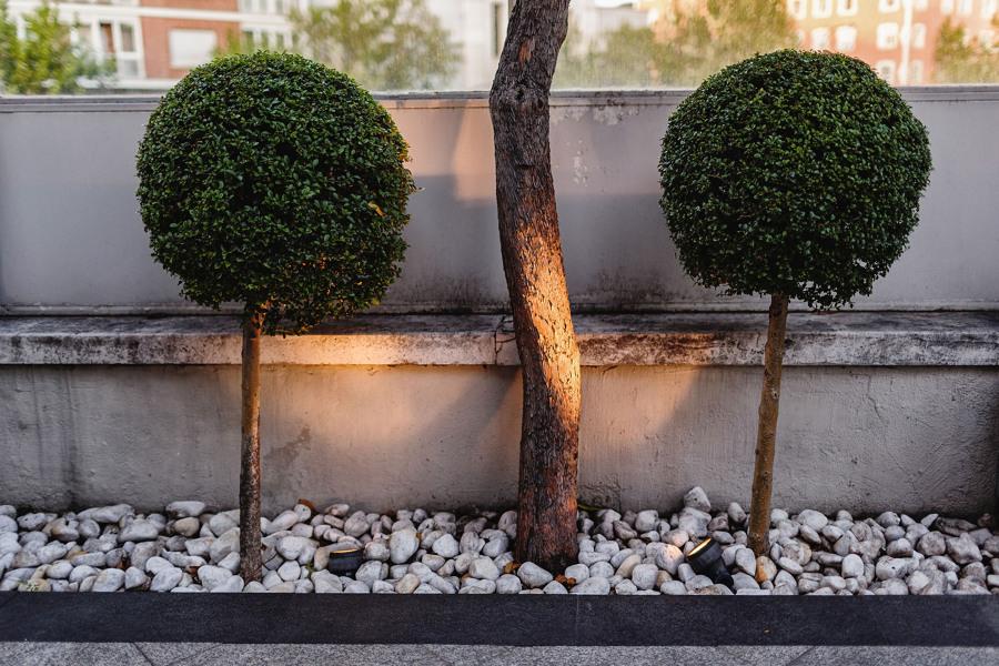 002 Estado después de la reforma de la terraza-jardín