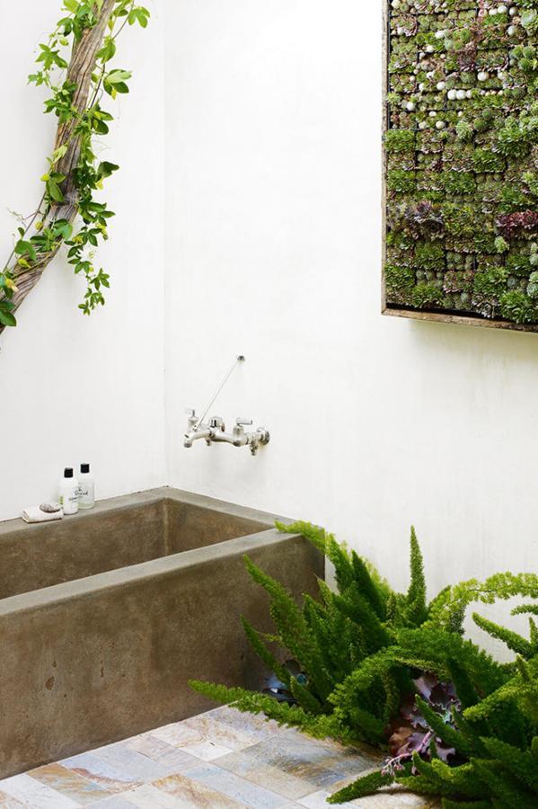 una baño decorado con plantas
