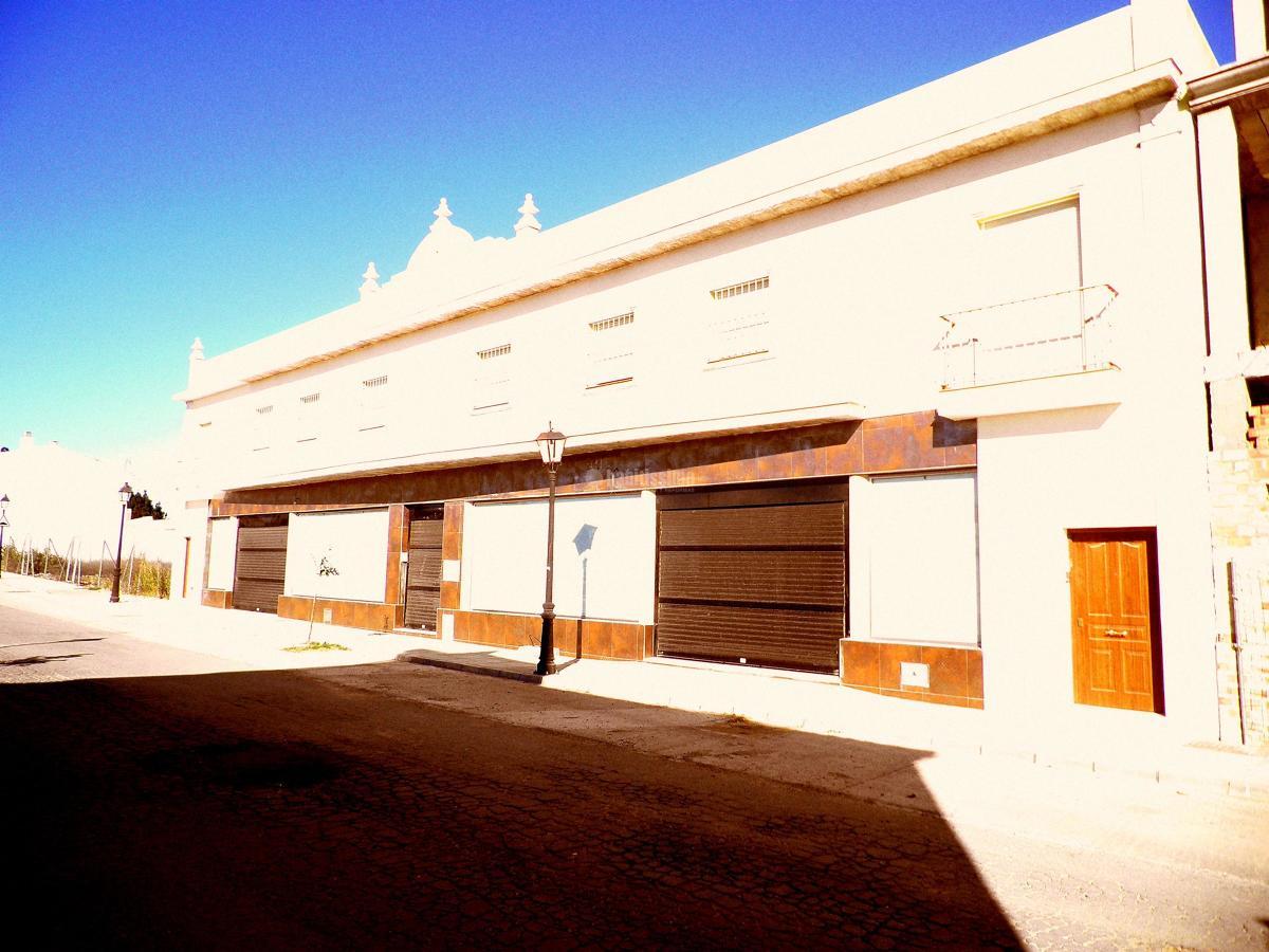 Edificio de viviendas y local comercial