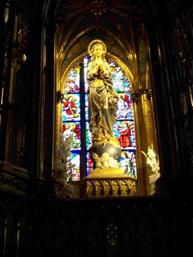 Alumbrado De Bajo Consumo En Basílica De La Concepción