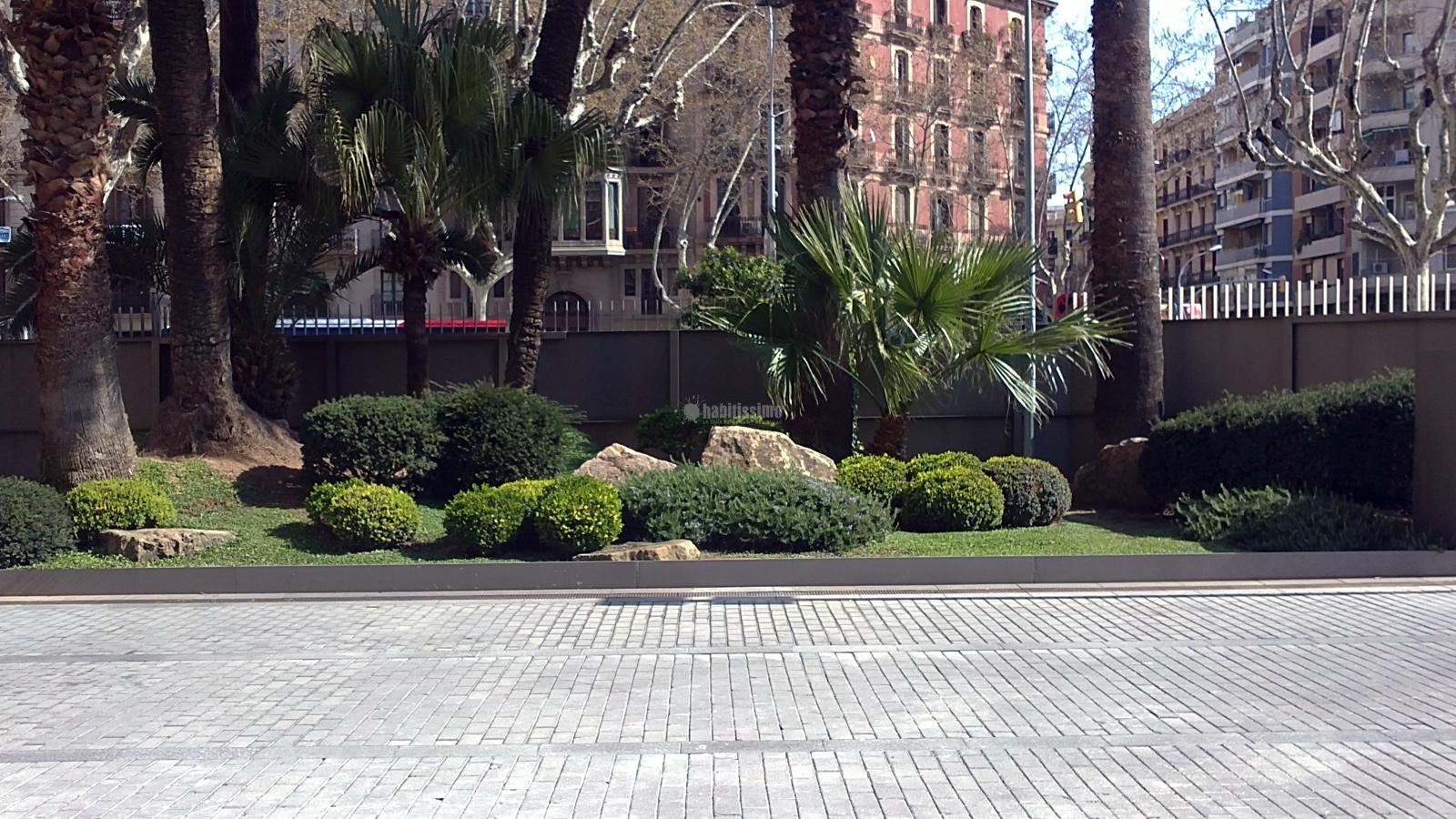 jardin y planta: