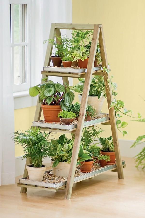 plantas en escalera