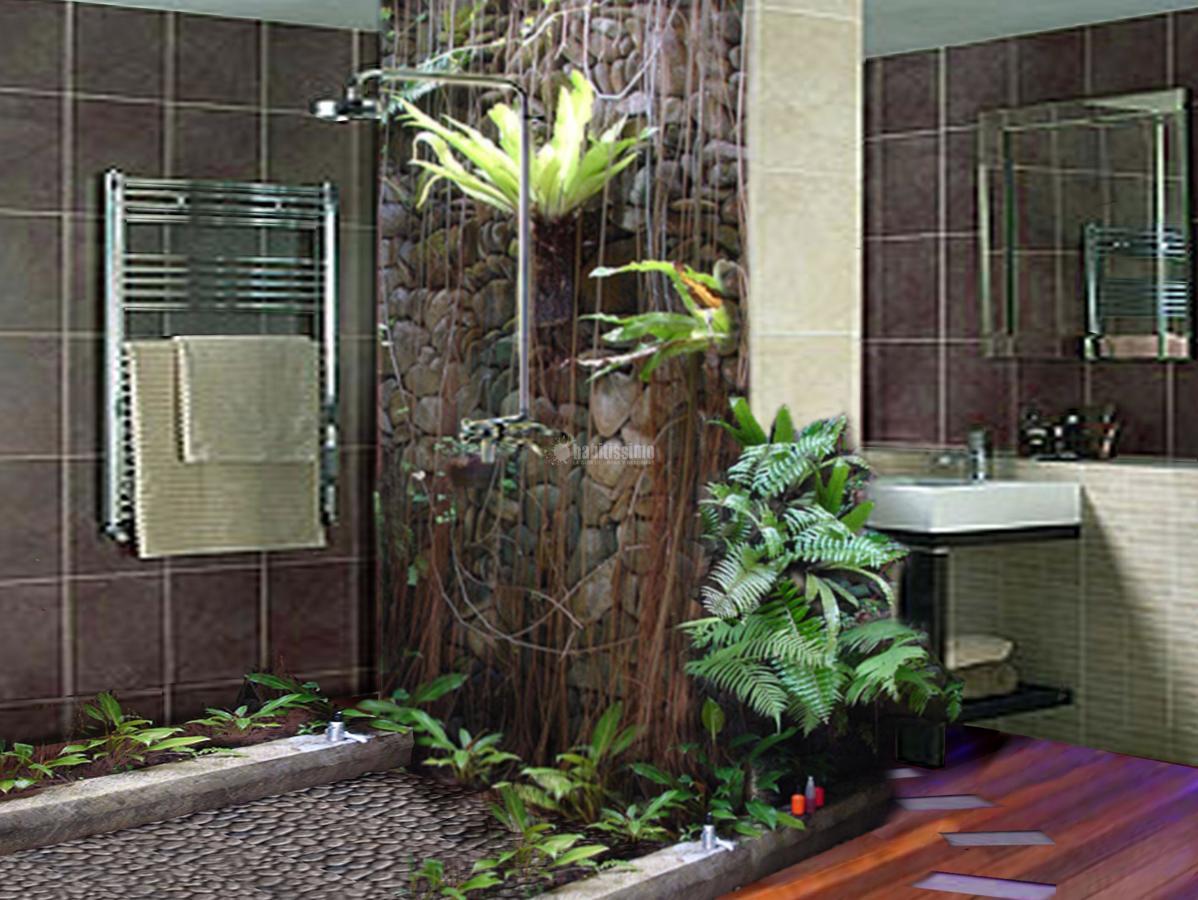 Foto interiores naturales de ambientes naturales 103612 for Jardines zen valladolid